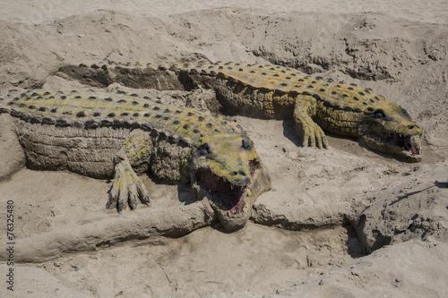 Foto op Plexiglas Krokodil crocodile sand in Andalusia
