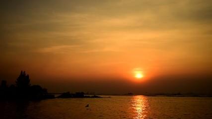 Bird flying with sunset sky at sea, Sriracha, Chonburi, Thailand