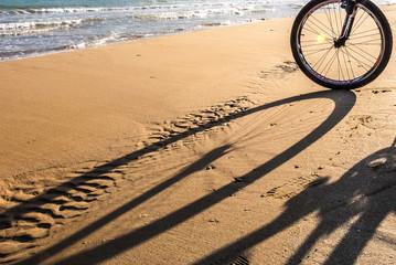 Ombre sulla spiaggia