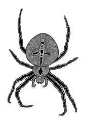 Vector illustration of abstract stylized spider