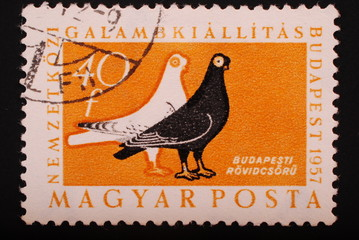 Hungary : Postage stampimage of two doves black and white
