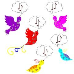 birds sings