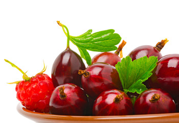 Wine red gooseberry and the raspberry