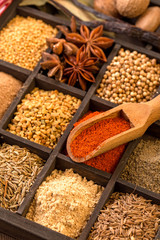 Various herbs and powder spices with shovel