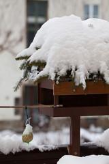 Vogelhäuschen und Meisenknödel im Schnee