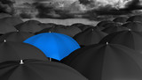 Leadership concept of a blue umbrella different from the rest