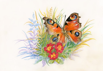 Beautiful butterfly with flowers picture