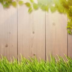 Abstract natural backgrounds with summer foliage, farm fence and