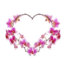 Orchid Flowers heart.