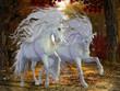 Obrazy na płótnie, fototapety, zdjęcia, fotoobrazy drukowane : Unicorn Brothers