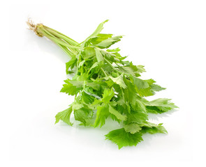 Bunch of fresh parsley  isolated on  white background
