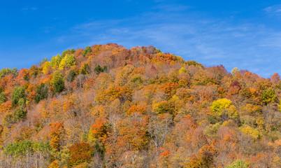 colorful autumn foliage mountain in Vermont