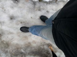 Ноги мужчины и собаки идут по снегу