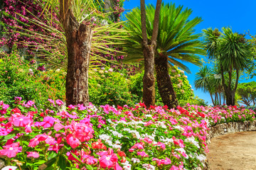 Beautiful flowers,plants and trees,Rufolo garden,Ravello,Italy