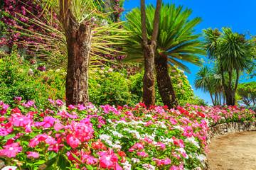 Beautiful flowers,plants and trees,Rufolo garden,Ravello,Italy