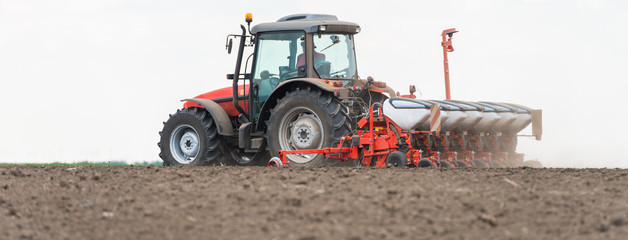sowing crops at field