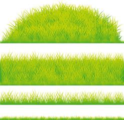 green grass design element - vector illustration