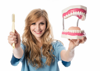 Ärztin mit Zahnmodell