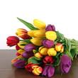 canvas print picture - Tulpen