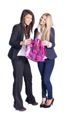 two girls with a shopping bag - isolated on white