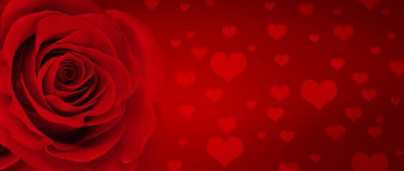 HIntergrund mit Rose und Herzen