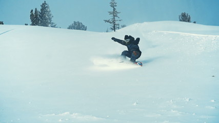 Spectacular Powder Turn