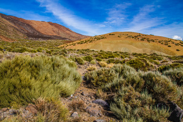 Teide National Park-Tenerife,Canary Islands,Spain