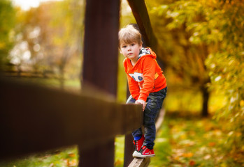 Boy in the autumn park