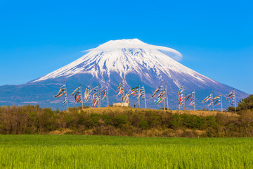 Carp banners and Snow covered Mount Fuji