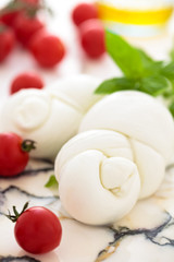 Fresh mozzarella.