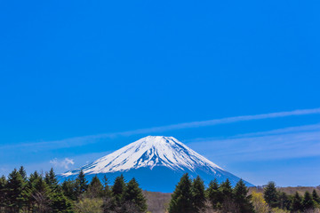 The green forest and Mount Fuji under the blue sky
