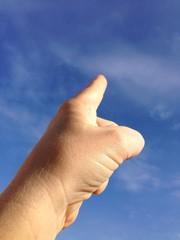 quando qualcuno indica il cielo solo lo stolto guarda il dito