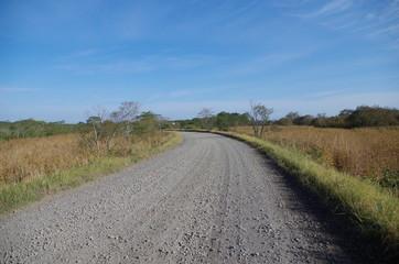 草原と未舗装路