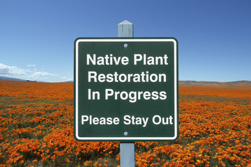 Native Plant Restoration Sign with Poppies
