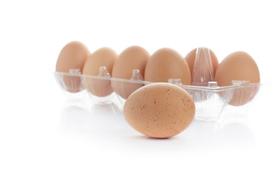 Organic egg in a carton isolated on white background