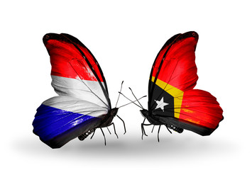 Two butterflies with flags Holland and East Timor