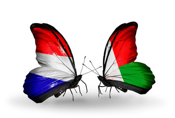 Two butterflies with flags Holland and Madagascar