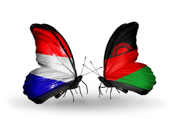 Two butterflies with flags Holland and Malawi