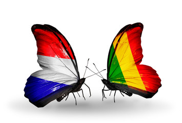 Two butterflies with flags Holland and Mali