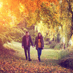 Couple holding hands walking in the forest in autumn