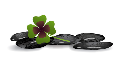 shamrock leaf on black stones