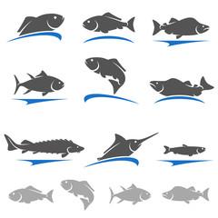 Fish set. Vector