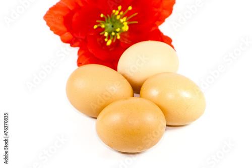 canvas print picture Frische Braune Eier