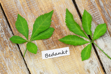 Bedankt (thank you in Dutch) with two leaves on rustic wood