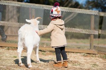 山羊と子供の後姿