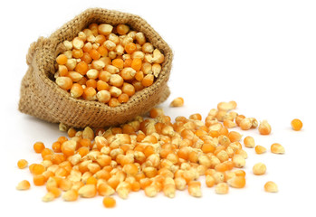 Corns in sack bag