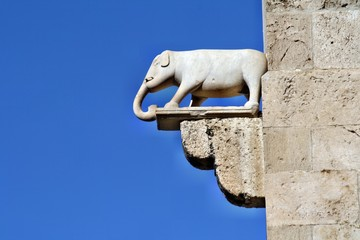 Statua dell'elefante a Cagliari