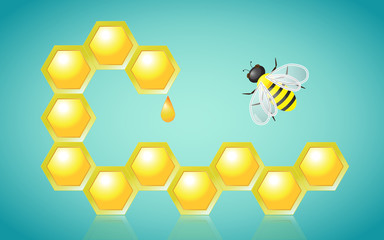 Honeycombs Honey Drop and Bee Vector Illustration
