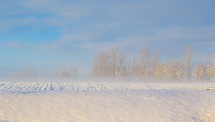 Winter landscape view fields forests covered snow fog