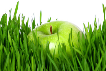 Green apple on grass with white background